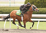 07 April 2011.  Hip #89 Half Ours - You Call That Art colt, consigned by Scanlon Training Center.