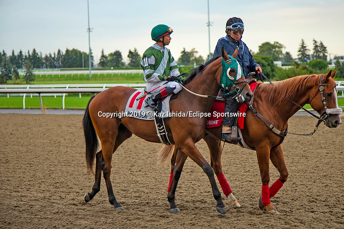 TORONT,CANADA-SEP 15: Cated Connelly is before the Summer Stakes at Woodbine Race Track on September 15,2019 in Toronto,Ontario,Canada. Kaz Ishida/Eclipse Sportswire/CSM