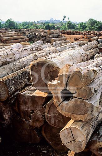 Juruena, Mato Grosso, Amazon, Brazil. Hardwood rainforest tree trunks in a pile in a timber sawmill yard.