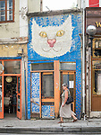 Big cat face and old shop, along the historic streets of Veliko Tarnovo, Bulgaria
