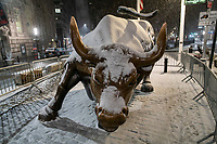 NEW YORK, NEW YORK - JANUARY 31: The bull of Wall Street is seen during the pass of the snowstorm on January 31, 2021 in New York City. New York City Mayor Bill de Blasio declared a state of emergency order due to the arriving storm that's expected to wallop New York, where airports are expected to cancel the majority if their flights. (Photo by Eduardo MunozAlvarez/VIEWpress)