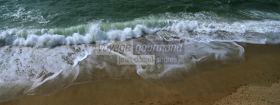 Europe/France/Aquitaine/64/Pyrénées-Atlantiques/Biarritz: l'océan à la Grande Plage