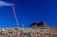 Spanien, Kanarische Inseln, Gomera, bei Alajaero, Blick auf Fortaleza