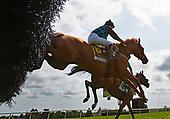 5th Iris Coggins Memorial Filly & Mare Hurdle Stakes - Amnicalola