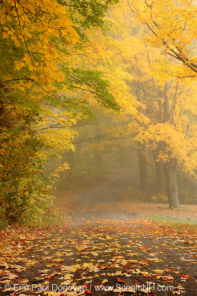 Foggy conditions at South Side Cemetery in Nottingham, New Hampshire during the autumn months.