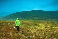 Descending from Leathad an Taobhain above Glen Feshie, Cairngorm National Park