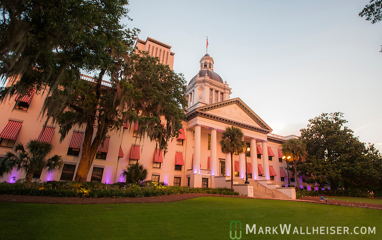 The Alzheimer's Association turned Florida's Old Capitol purple from dusk on June 16 to dawn on June 17 , 2015 to draw attention to Alzheimer's and Brain Awareness Month.