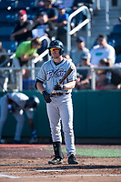Tri-City Dust Devils third baseman Luke Becker (10) at bat during a Northwest League game against the Everett AquaSox at Everett Memorial Stadium on September 3, 2018 in Everett, Washington. The Everett AquaSox defeated the Tri-City Dust Devils by a score of 8-3. (Zachary Lucy/Four Seam Images)