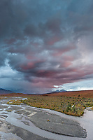 Evening clouds lit by pink light over the Savage river in Denali National Park.