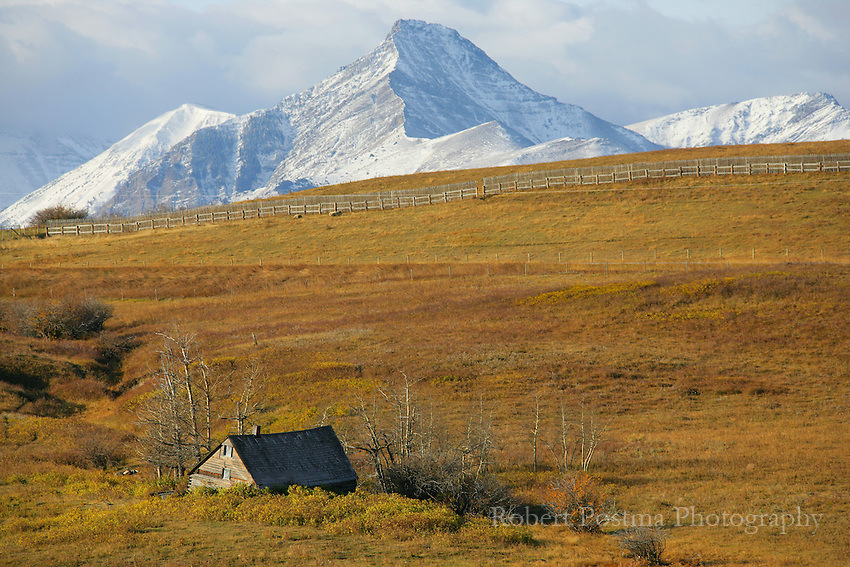 A dilapidated farmhouse lays at the base of the mountain of Waterton National Park.