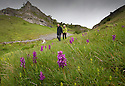 20/05/15<br /> <br /> Walkers pass stunning early purple orchids blooming in Lathkill Dale in the Derbyshire Peak District near Bakewell. Lathkill Dale is one of the finest limestone dales in the county and the rare flowers are thriving in the recent sunshine and showers.<br /> <br /> All Rights Reserved: F Stop Press Ltd. +44(0)1335 418629   www.fstoppress.com.