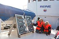 Walsafari, Wal-Safari, Ausfahrt mit einem Kutter, Boot, Schiff auf den Atlantik um Wale zu beobachten, whale watching, Wal, Andenes, Nord - Norwegen, Kinder an den Informationstafeln auf Deck