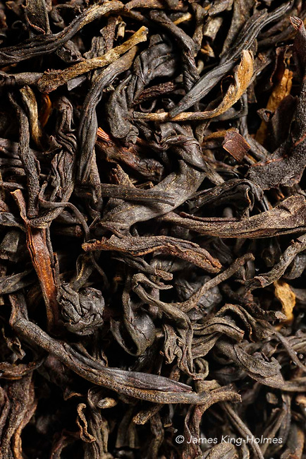 Leaves of Assam-grown Camellia sinensis processed by oxidation as Black Tea, refering to the colour of the processed leaves. The Assam variety of the plant has larger leaves than other varieties of the plant used for less oxidised teas. The image covers an area of 30mm x 20mm.
