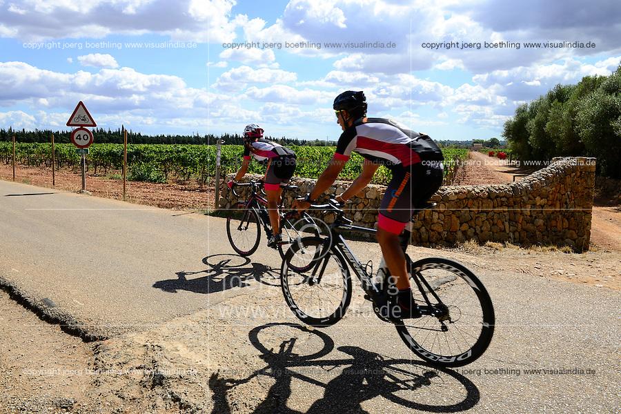 SPAIN Mallorca, wine fields and bicycle driver / SPANIEN Mallorca, Weinfelder und Fahrradfahrer