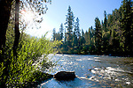 The Payette River area, along the Wildlife Canyon Scenic Byway and Ponderosa Pine Scenic Byway, is close enough to Boise for a weekend loop drive through pristine country with a good population of viewable wildlife, fishing, white water, and camping.