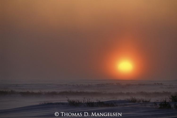 Sun setting over a snow-covered plain.