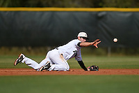 Dartmouth Big Green infielder Matt Parisi (6) during a game against the Ball State Cardinals on March 7, 2015 at North Charlotte Regional Park in Port Charlotte, Florida.  Ball State defeated Dartmouth 7-4.  (Mike Janes/Four Seam Images)