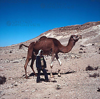 Reise nach Awdat, Israel 1970er Jahre. Journey to Avdat, Israel 1970s.