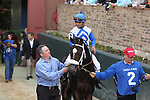 HOT SPRINGS, AR - FEBRUARY 19: Sporting Chance #2, with jockey Luis Saez aboard before the running of the Southwest Stakes at Oaklawn Park on February 19, 2018 in Hot Springs, Arkansas. (Photo by Justin Manning/Eclipse Sportswire/Getty Images)