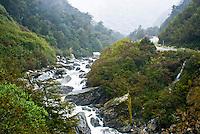 Gates of Haast, Haast River - West Coast, South Westland, New Zealand