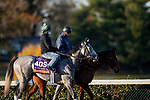 November 2, 2020: Harvey'S Lil Goil, trained by trainer William I. Mott, exercises in preparation for the Breeders' Cup Filly & Mare Turf at Keeneland Racetrack in Lexington, Kentucky on November 2, 2020. Alex Evers/Eclipse Sportswire/Breeders Cup
