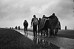 Refugees - Hungary - Serbia border