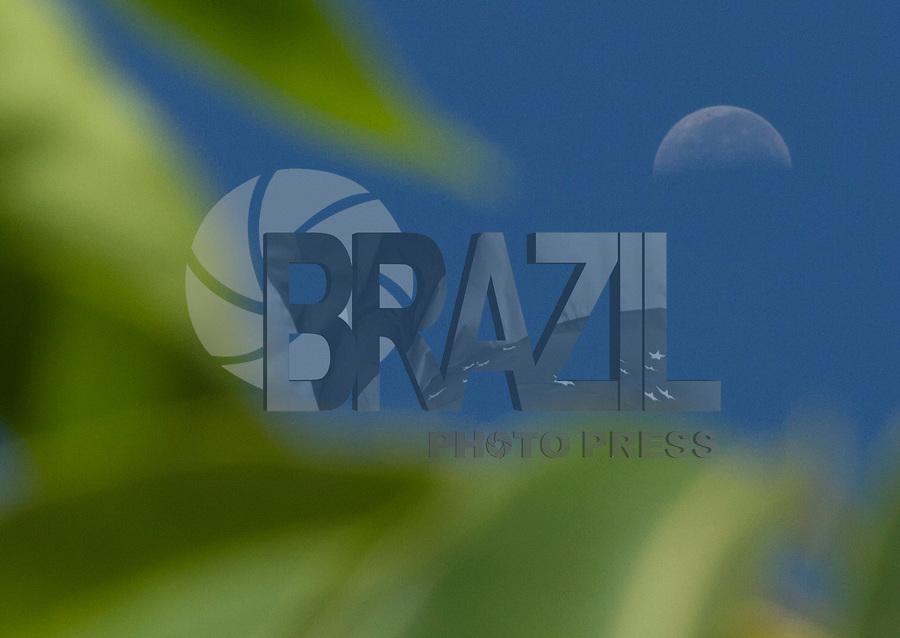 SAO PAULO 05 DE JANEIRO DE 2013 - CLIMA TEMPO - LUA - Lua é vista na manha deste sabado(05), em sua fase de ultimo quarto em meio a antena parabolicia e abustos no sob o ceu do bairro do Ipiranga regiao sul de Sao Paulo. (FOTO:AMAURI NEHN/BRAZIL PHOTO PRESS)