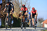 The peloton including Tiesj Benoot (BEL) Team DSM gives chase on Oude Kwaremtont during the 73rd edition of Kuurne-Brussel-Kuurne 2021 running 197km from Kuurne to Kuurne, Belgium. 28th February 2021  <br /> Picture: Serge Waldbillig | Cyclefile<br /> <br /> All photos usage must carry mandatory copyright credit (© Cyclefile | Serge Waldbillig)