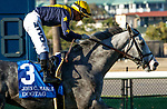 September 04, 2021: Dogtag #3, ridden by jockey Umberto Rispoli in the post parade prior to the Grade 2 John C Mabee Stakes at Del Mar Racetrack in Del Mar California on September 4, 2021. Casey Phillips/Eclipse Sportswire/CSM