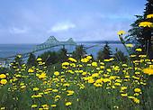 View of Astoria Bridge above flowers in medow