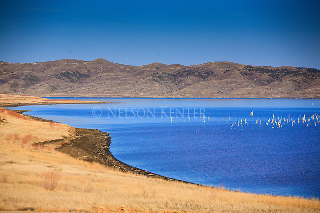 Shore line around Fort Peck Reservoir in the Missouri River Breaks of eastern Montana