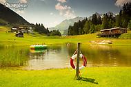 Image Ref: SWISS075<br /> Location: Switzerland<br /> Date of Shot: 22nd June 2017