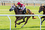 July 6, 2019 : Henley's Joy #6, ridden by Jose Lezcano, wins the Belmont Derby Invitational during the Stars and Stripes Racing Festival at Belmont Park in Elmont, New York. Scott Serio/Eclipse Sportswire/CSM