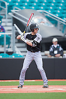 Jacob Marotta (29) of the Bryant Bulldogs at bat against the Coastal Carolina Chanticleers at Springs Brooks Stadium on March 13, 2015 in Charlotte, North Carolina.  The Chanticleers defeated the Bulldogs 7-2.  (Brian Westerholt/Four Seam Images)