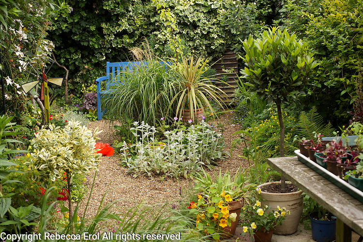 Small dry gravel garden in London, UK
