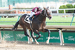 November 27, 2020: Silver State, trained by trainer Steve Asmussen, wins Race 3, an allowance optional claiming at Churchill Downs in Louisville, Kentucky on November 27, 2020. Jessica Morgan/Eclipse Sportswire/CSM