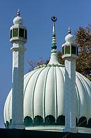 India, Dehradun.  Minarets and Dome of the Dhamawala Mosque in Central Dehradun.
