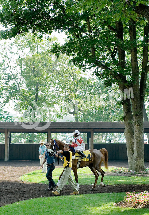 Most Likley in the paddock before The Liberty Bell Arabian Stake (gr3) at Delaware Park on 7/5/10