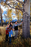 A family of five look at a fall-colored aspen leaf while hiking in Rocky Mtn Nat'l Park, CO.