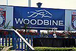 Scene from around the track on Woodbine Mile Day on September 18, 2011 at Woodbine Racetrack in Rexdale, Ontario, Canada.  (Bob Mayberger/Eclipse Sportswire)