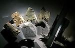 Peopling of the Americas, Cactus Hill, VA, 17,000 BP, stone tools, Joe McAvoy, Lynn McAvoy