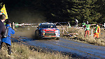 Sebastien Loeb driving his Citroen Total WRT C4 through the Resolven stage of the Wales Rally GB in the forests of South Wales this weekend. Loeb has woon the Wales Rally GB by just 2.7 seconds.