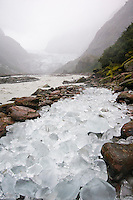 On a rainy day in Franz Josef Glacier Valley. The ice of the glacier terminus may collapse at any time and an already risen Waiho River will deposit loose ice rocks many kilometres away from the glacier - Westland National Park, West Coast, New Zealand