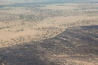 Tanzania.  Serengeti National Park.  Controlled Burning Bounded by Roadways.  Burning stimulates new vegetation and reduces tsetse fly infestation.