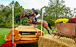 October 16, 2021: Oliver Townend (GBR), aboard Cooley Master Class, competes during the Cross Country Test at the 5* level during the Maryland Five-Star at the Fair Hill Special Event Zone in Fair Hill, Maryland on October 16, 2021. Scott Serio/Eclipse Sportswire/CSM