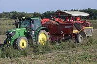 CROATIA, Belica, potato farming at Dodlek Agro / KROATIEN, Belica, Kartoffelanbau bei Dodlek Agro, Ernte mit John deere Traktor und Grimme Rodemaschine