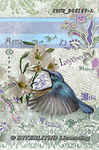 Isabella, REALISTIC ANIMALS, REALISTISCHE TIERE, ANIMALES REALISTICOS, paintings+++++,ITKE066167-L,#a#, EVERYDAY ,collage