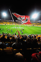 A fan waves a St Kilda flag during the ANZAC Day AFL match between St Kilda Saints and Brisbane Lions at Westpac Stadium, Wellington, New Zealand on Friday, 25 April 2014. Photo: Dave Lintott / lintottphoto.co.nz