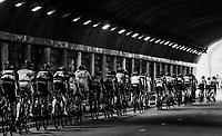 tunnel vision<br /> <br /> 104th Tour de France 2017<br /> Stage 19 - Embrun › Salon-de-Provence (220km)