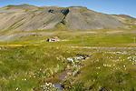 Farm, Grundarfjordur, West Fjords, Iceland